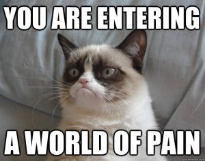 grumpy cat pain