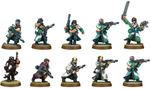 Valhallan Ice Warriors Squad